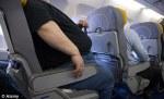 fat person on a plane